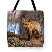 Going To The Den  Tote Bag