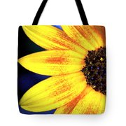 Gold And Blue Tote Bag