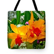 Gold And Red Orchids At Maerim Orchid Farm In Chiang Mai-thailan Tote Bag