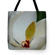 Gold Centered Magnolia Tote Bag