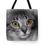 Gold Eyes Tote Bag