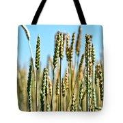 Gold Harvest Blue Sky Tote Bag