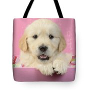 Gold Retriever Pink Background Tote Bag