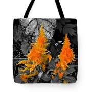 Golden Accentuation Tote Bag