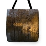 Golden Afternoon Reflections Tote Bag