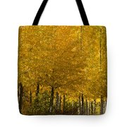 Golden Aspens Tote Bag by Don Schwartz