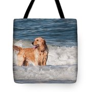 Golden At The Beach Oil Tote Bag