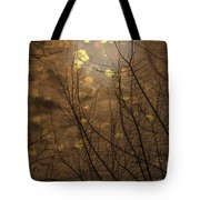 Golden Autumn Abstract Sky Tote Bag