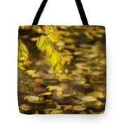Golden Autumn Colour Foliage On Rainy Pond Tote Bag