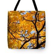 Golden Autumn - Featured 3 Tote Bag