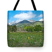 Golden Banner In Horseshoe Park In Rocky Mountain Np-co- Tote Bag