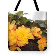 Golden Beauty Tote Bag