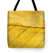 Golden Beech Leaf Tote Bag