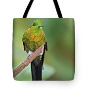 Golden-breasted Puffleg Tote Bag