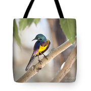 Golden-breasted Starling Tote Bag
