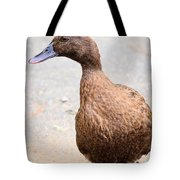 Golden Brown Feathers Tote Bag
