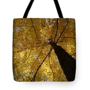 Golden Canopy Tote Bag