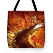 Golden Canyon Tote Bag