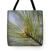 Golden Catkins Of The Great Pine Tote Bag