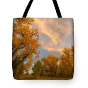 Golden Chatfield Tote Bag