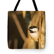 Golden Chickadee Tote Bag
