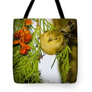 Golden Christmas Finch Tote Bag