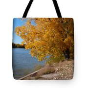 Golden Cottonwoods Tote Bag