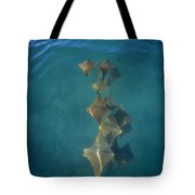 Golden Cownose Rays Schooling Galapagos Tote Bag
