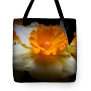Golden Daffodils Tote Bag