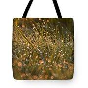 Golden Dew Drops Tote Bag