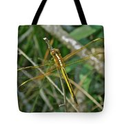 Golden Dragonfly At Rest Tote Bag