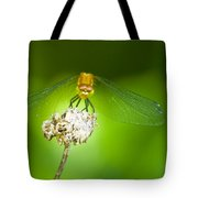 Golden Dragonfly On Perch Tote Bag