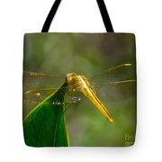 Golden Dragonfly Tote Bag