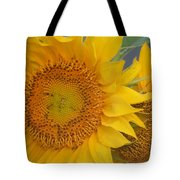 Golden Duo - Sunflowers Tote Bag