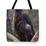 Golden Eagle 2 Tote Bag