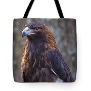 Golden Eagle 3 Tote Bag