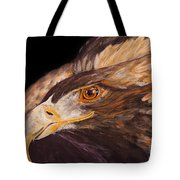 Golden Eagle Close Up Painting By Carolyn Bennett Tote Bag