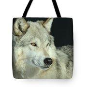 Golden Eye Tote Bag