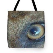Golden Eye Of Norbu 12 18 2011 Tote Bag