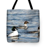 Golden-eyed Ducks Tote Bag