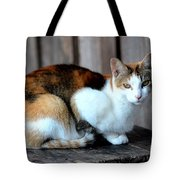 Golden Eyed Ferrel Tote Bag