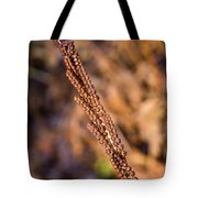 Golden Fern Spore Stem 6 Tote Bag