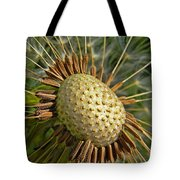 Seeds Of Time Tote Bag