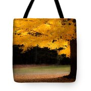 Golden Glow Of Autumn Fall Colors Tote Bag