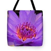 Golden Glow Of The Lavender Lotus Tote Bag