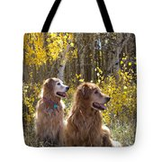 Golden Goldens - Golden Retriever Brothers - Casper Mountain - Casper Wyoming Tote Bag