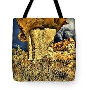 Golden Hoodoo Tote Bag