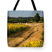 Golden Hour On Country Road Tote Bag