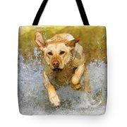 Golden Labrador Tote Bag