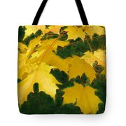 Golden Leaves Floating Tote Bag
